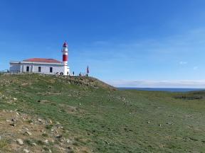 Punta Arenas (124)
