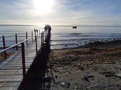 Punta Arenas (49)
