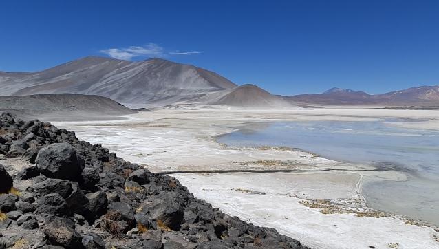 San Pedro de Atacama (Laguna Altiplanica) (101).jpg