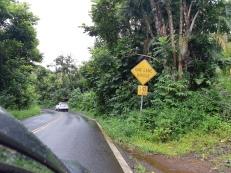 Sur la Hana Road...
