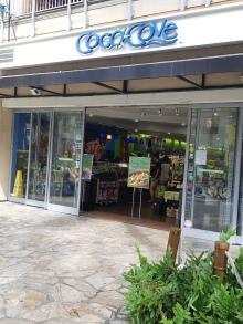 Coco Cove, LA place pour goûter les fameux Poke Bol!